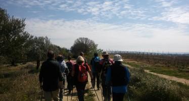 Marcha nórdica por los caminos de El Pueyo