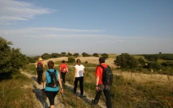 Jornadas prácticas de nordic walking en Azlor