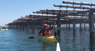 Promocional de kayak a la Bahía de San Carlos de la Rápita