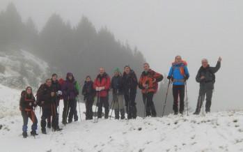BELEN DE ALTURA – COMODOTO PINETA 2361 msnm