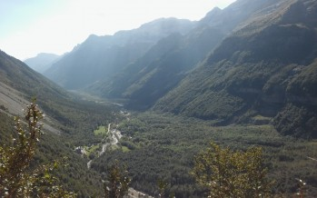Pineta-Camino Montaspro
