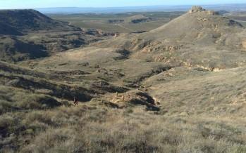 Senderismo infantil en Binaced: mini Trail El Pino