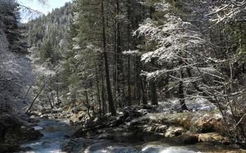 Belén Montañero 2018