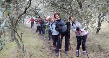 Vuelta a Barbastro con marcha nórdica: 1ªetapa: Monasterio del Pueyo-Polígono Valle del Cinca