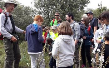 Senderismo infantil: Excursión botánica