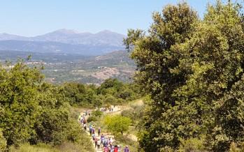 """II Jornadas de marcha nórdica de Aragón """"Nórdica entre viñedos"""""""
