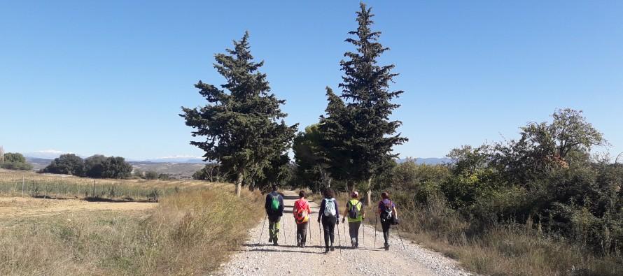 Marcha nórdica: Berbegal- Monte de Viarz-Montarruego
