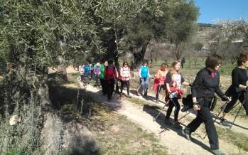 Marcha nórdica: Montesa-Ermita Virgen del Socorro-Montesa