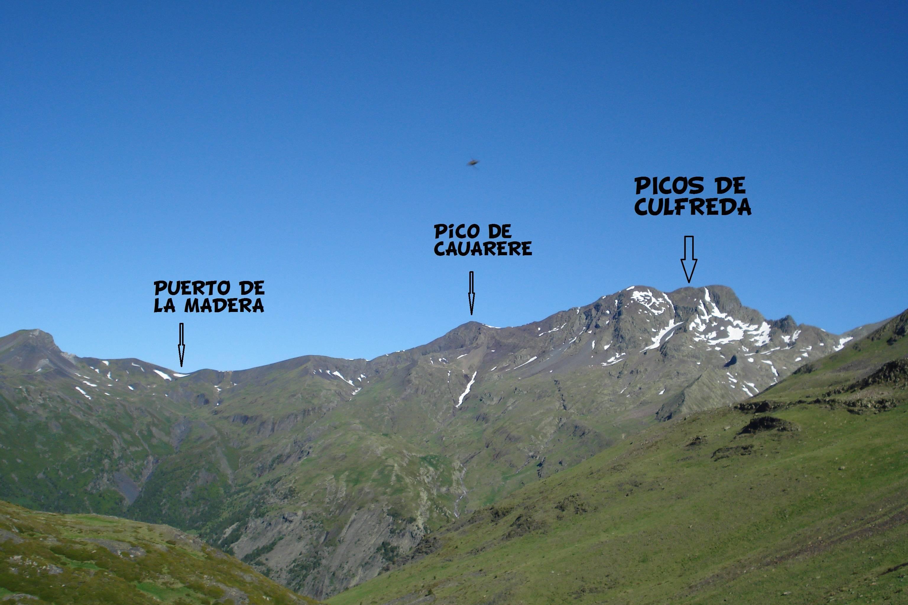 cULFREDA06